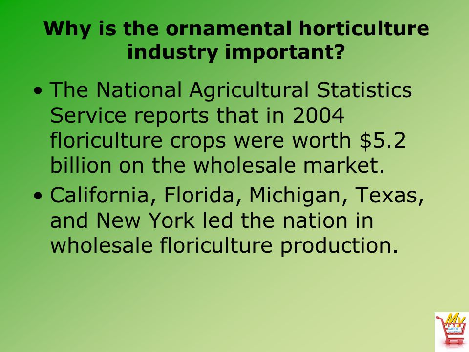 Why is the ornamental horticulture industry important