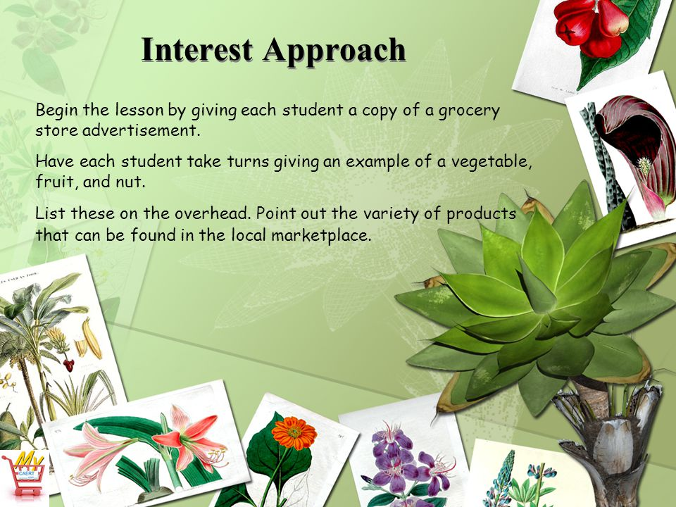 Interest Approach Begin the lesson by giving each student a copy of a grocery store advertisement.