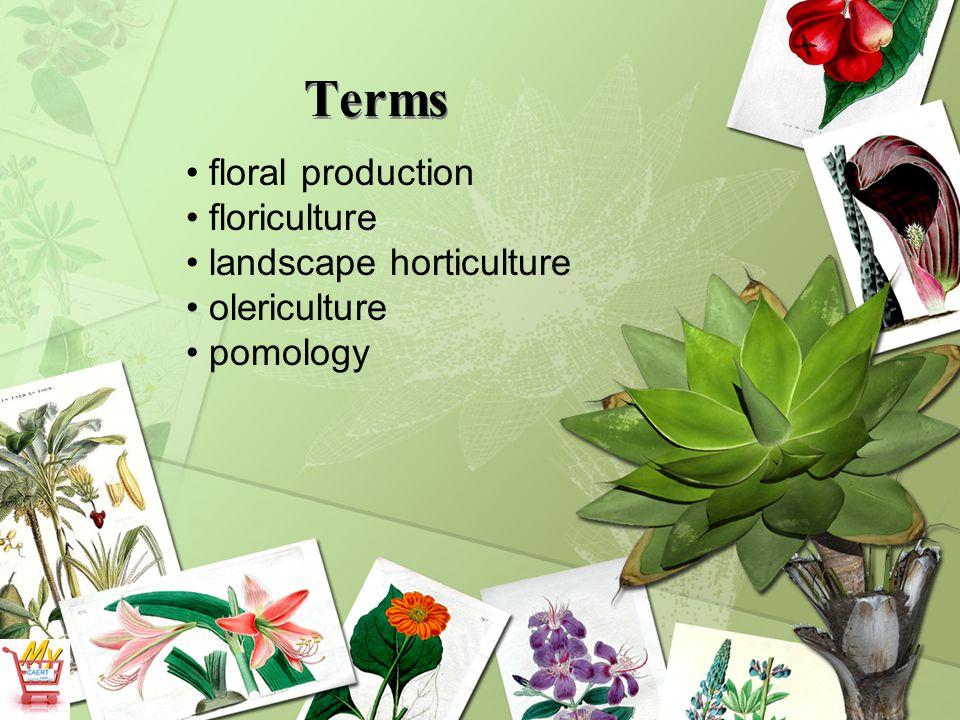 Terms floral production floriculture landscape horticulture