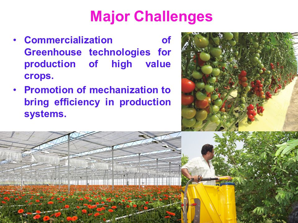 Major Challenges Commercialization of Greenhouse technologies for production of high value crops.