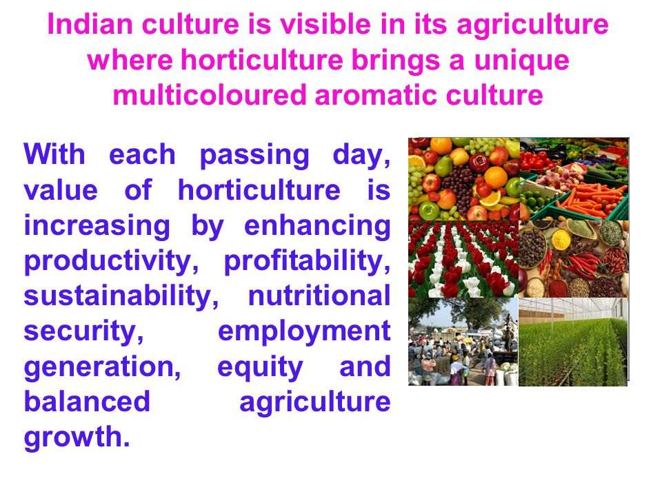Indian culture is visible in its agriculture where horticulture brings a unique multicoloured aromatic culture