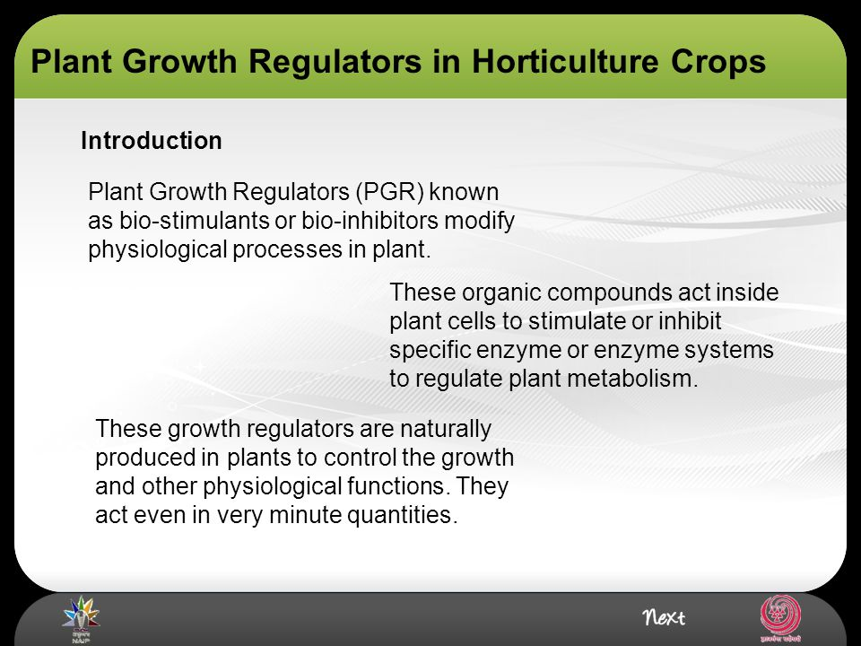 introduction to plant physiology ppt
