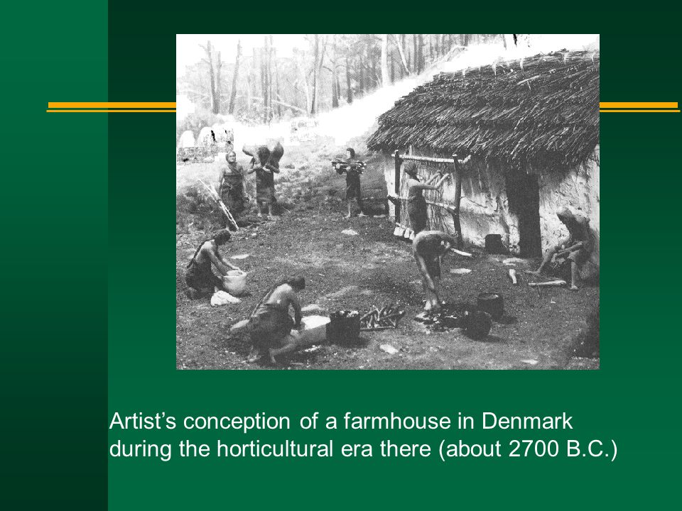 Artist's conception of a farmhouse in Denmark during the horticultural era there (about 2700 B.C.)