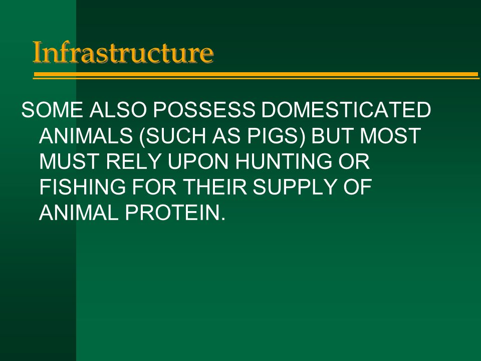 Infrastructure SOME ALSO POSSESS DOMESTICATED ANIMALS (SUCH AS PIGS) BUT MOST MUST RELY UPON HUNTING OR FISHING FOR THEIR SUPPLY OF ANIMAL PROTEIN.