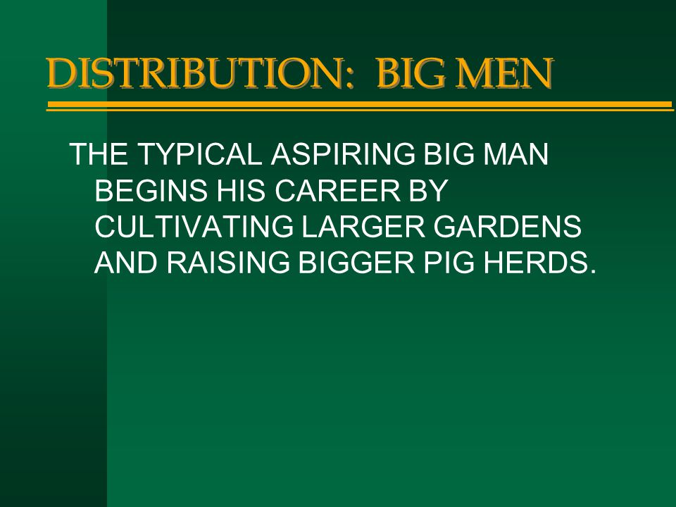 DISTRIBUTION: BIG MEN THE TYPICAL ASPIRING BIG MAN BEGINS HIS CAREER BY CULTIVATING LARGER GARDENS AND RAISING BIGGER PIG HERDS.