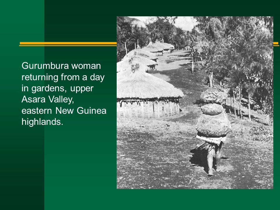 Gurumbura woman returning from a day in gardens, upper Asara Valley, eastern New Guinea highlands.