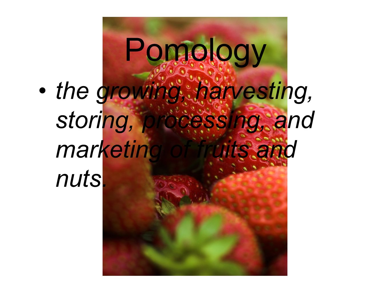 Pomology the growing, harvesting, storing, processing, and marketing of fruits and nuts.