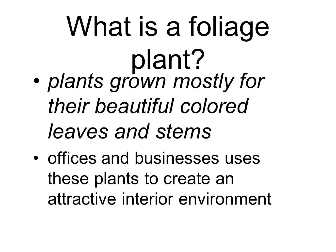 What is a foliage plant plants grown mostly for their beautiful colored leaves and stems.