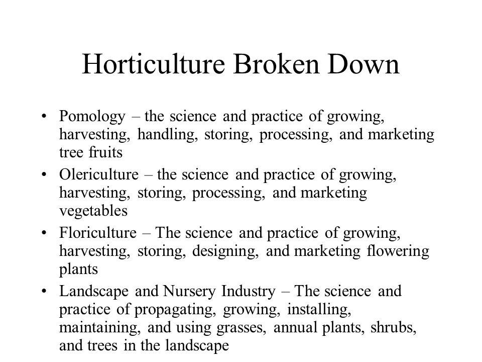 Horticulture Broken Down