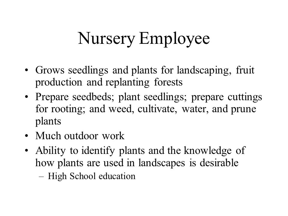 Nursery Employee Grows seedlings and plants for landscaping, fruit production and replanting forests.
