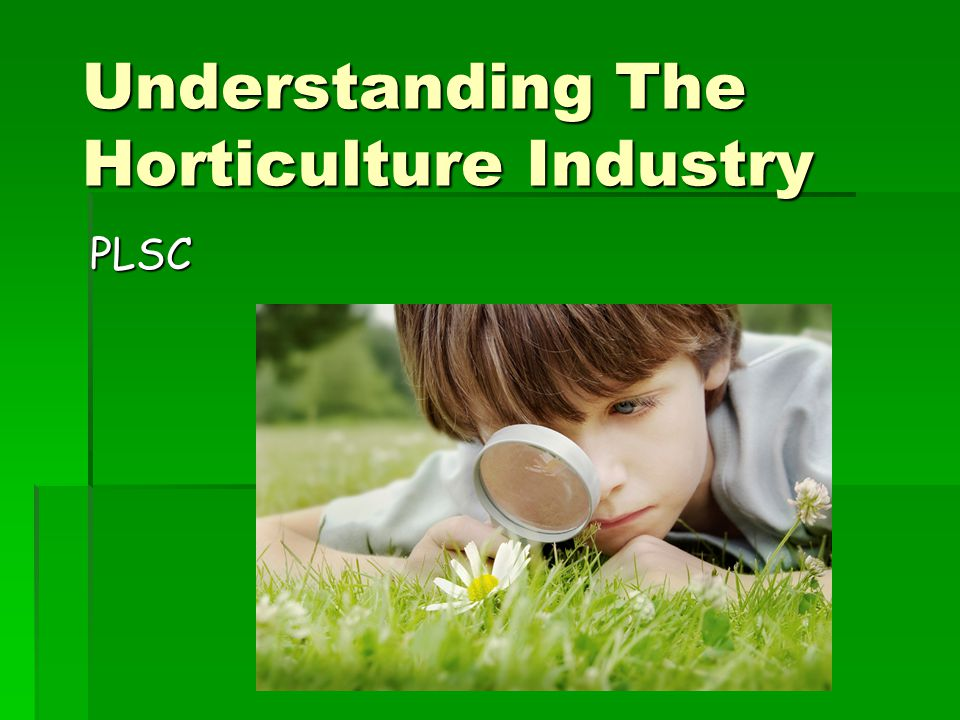 Understanding The Horticulture Industry