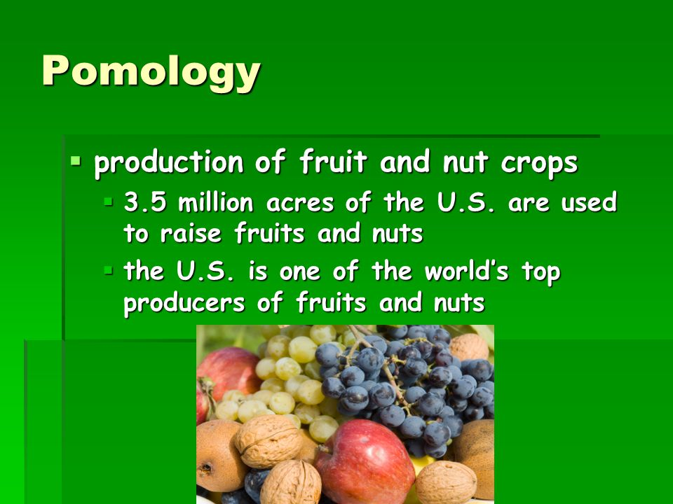 Pomology production of fruit and nut crops