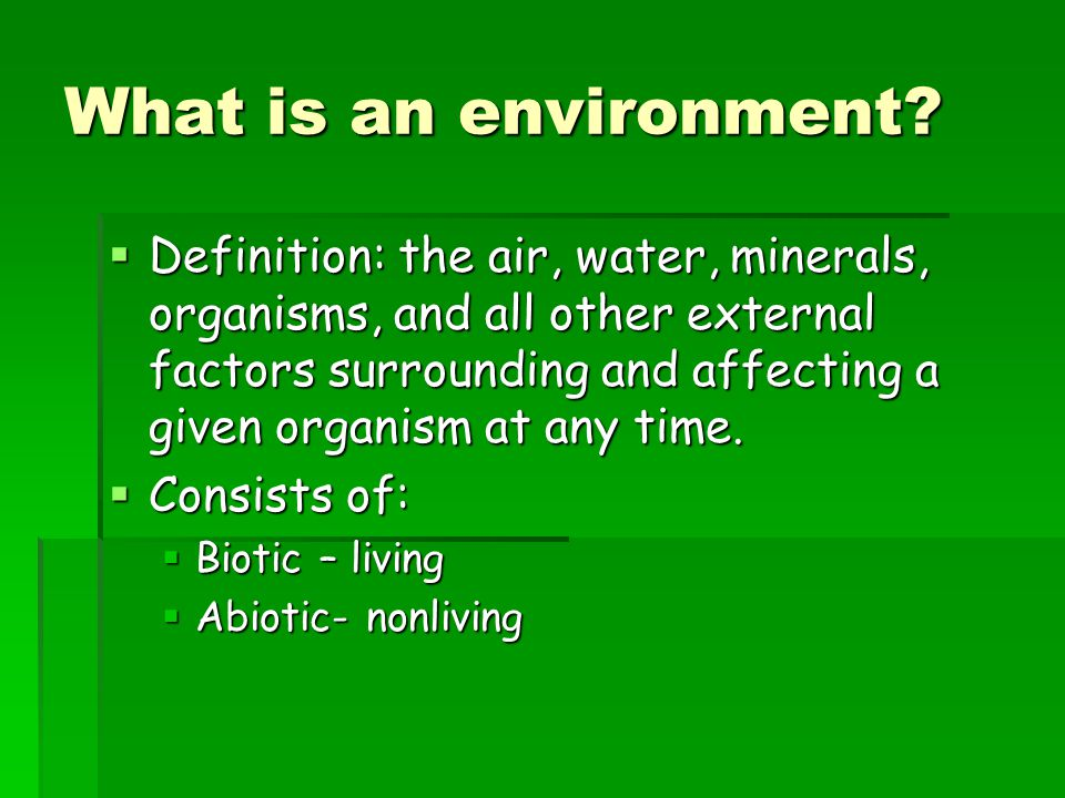 What is an environment
