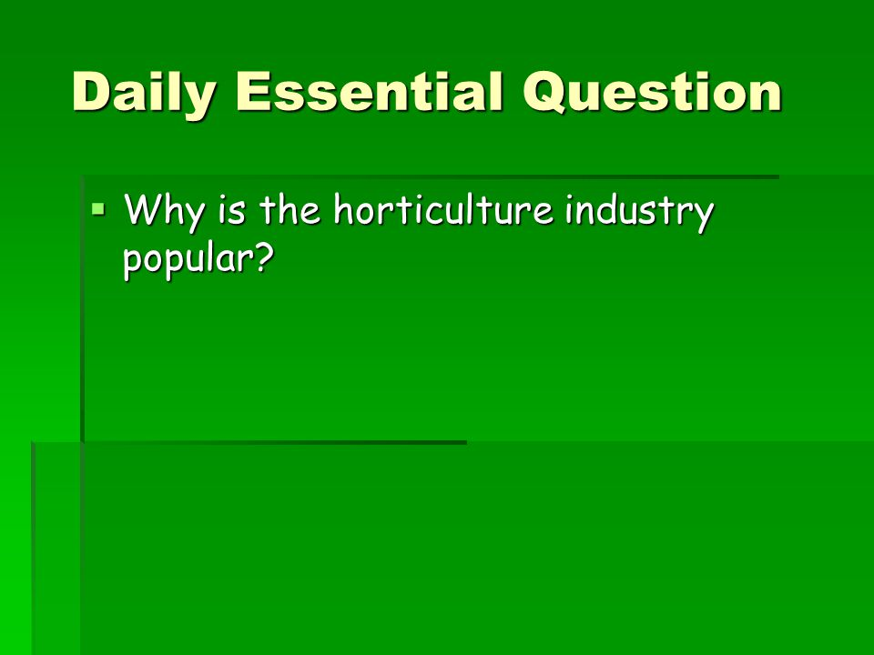 Daily Essential Question