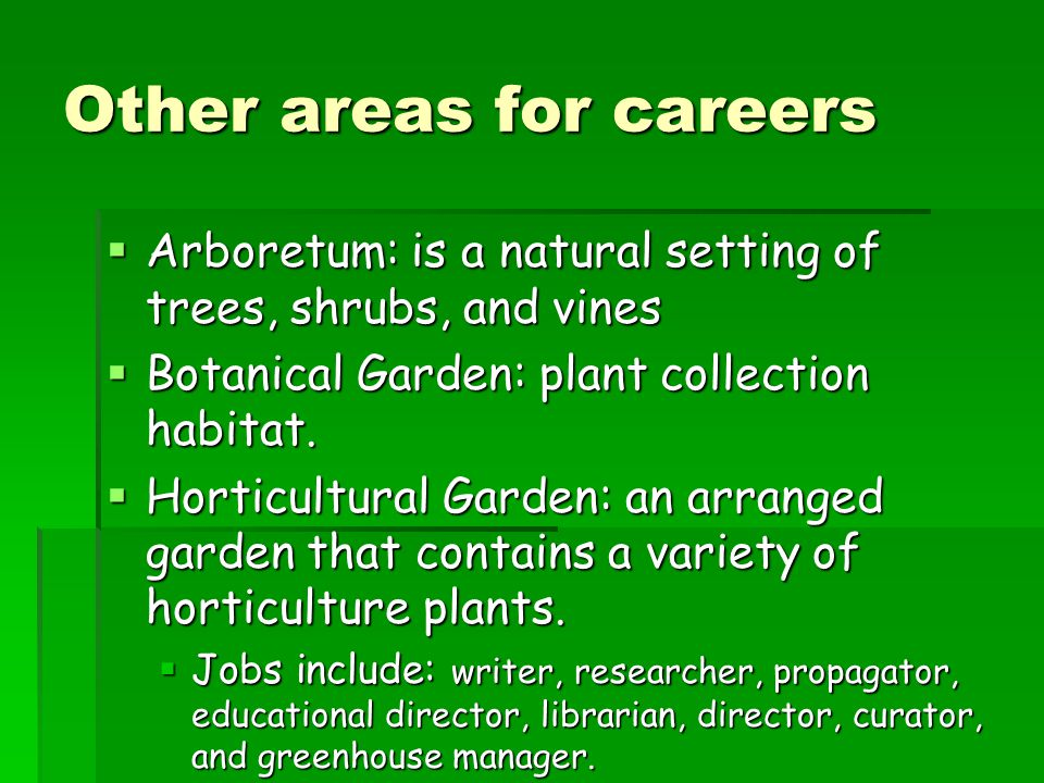 Other areas for careers