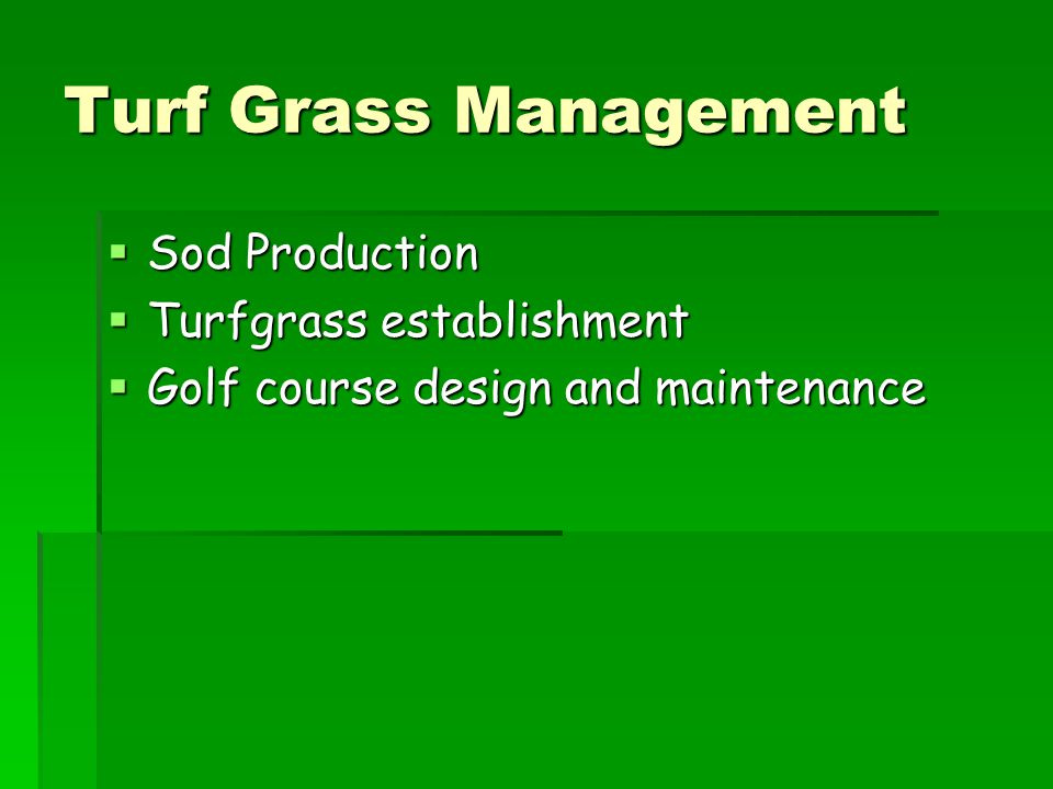 Turf Grass Management Sod Production Turfgrass establishment
