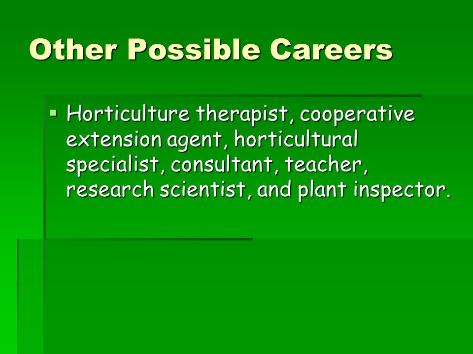Other Possible Careers