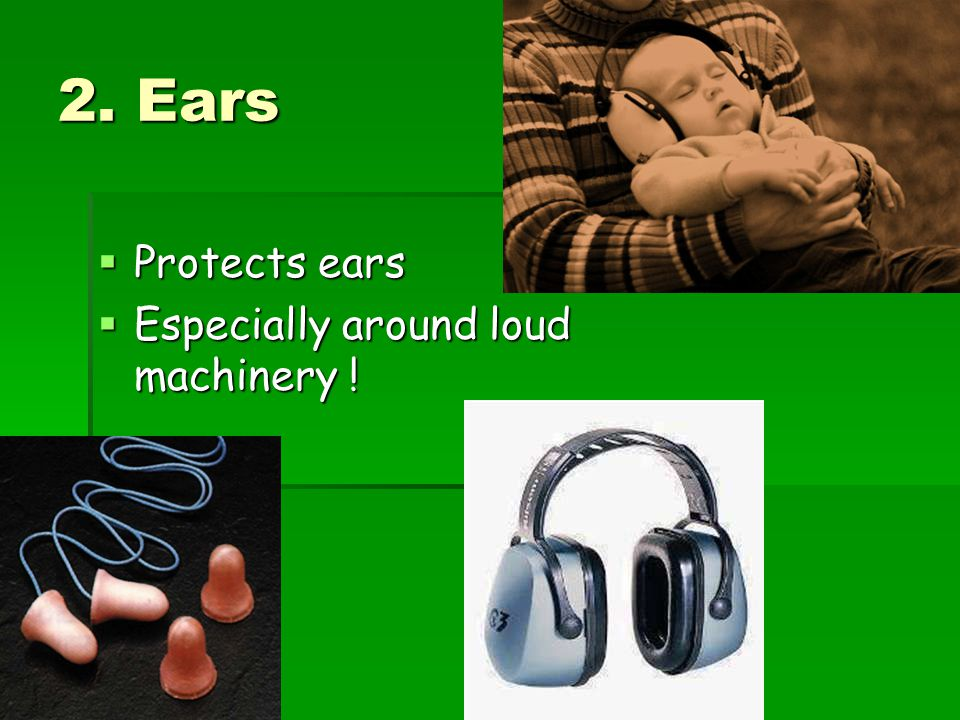 2. Ears Protects ears Especially around loud machinery !