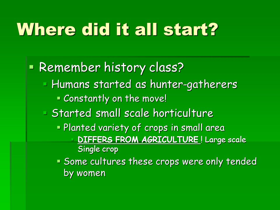 Where did it all start Remember history class
