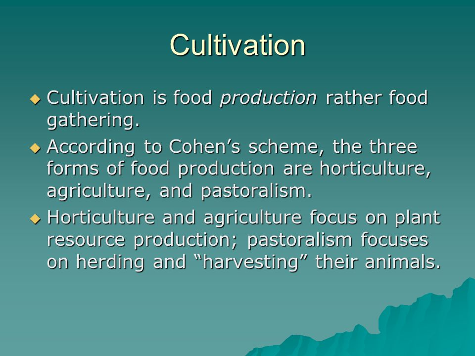 Cultivation Cultivation is food production rather food gathering.
