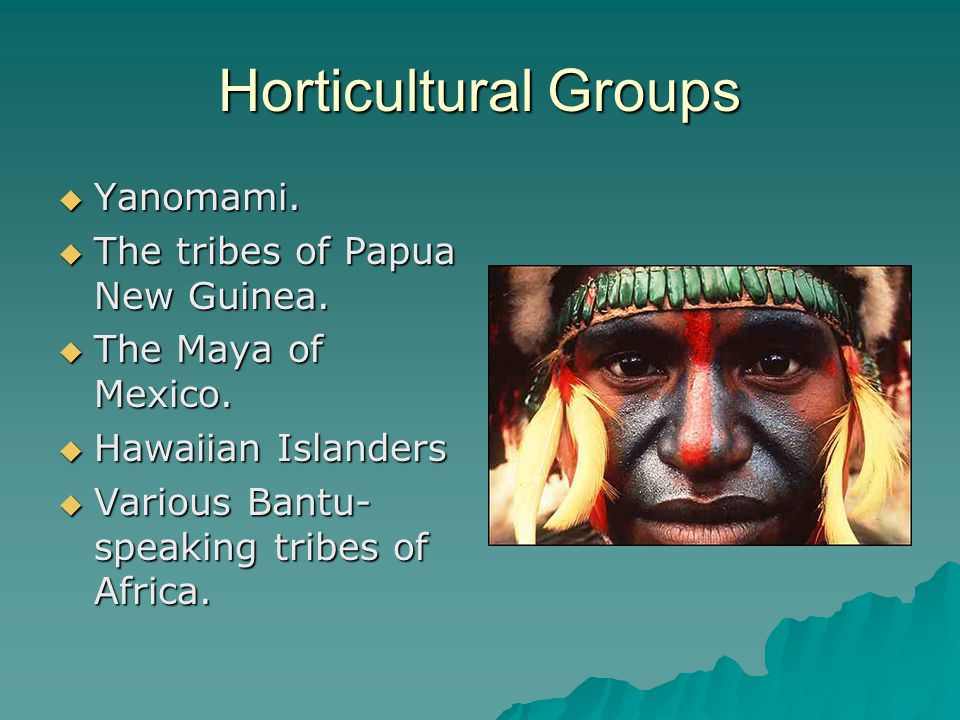 Horticultural Groups Yanomami. The tribes of Papua New Guinea.