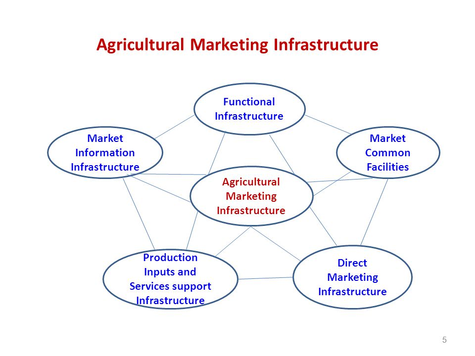 Agricultural Marketing Infrastructure