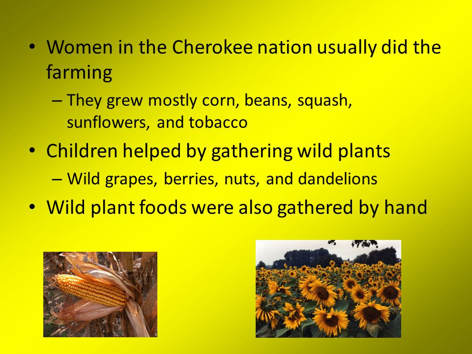 Women in the Cherokee nation usually did the farming