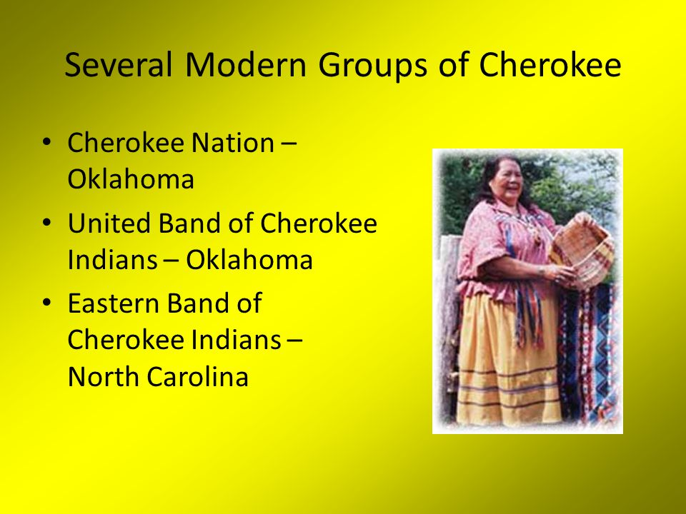 Several Modern Groups of Cherokee
