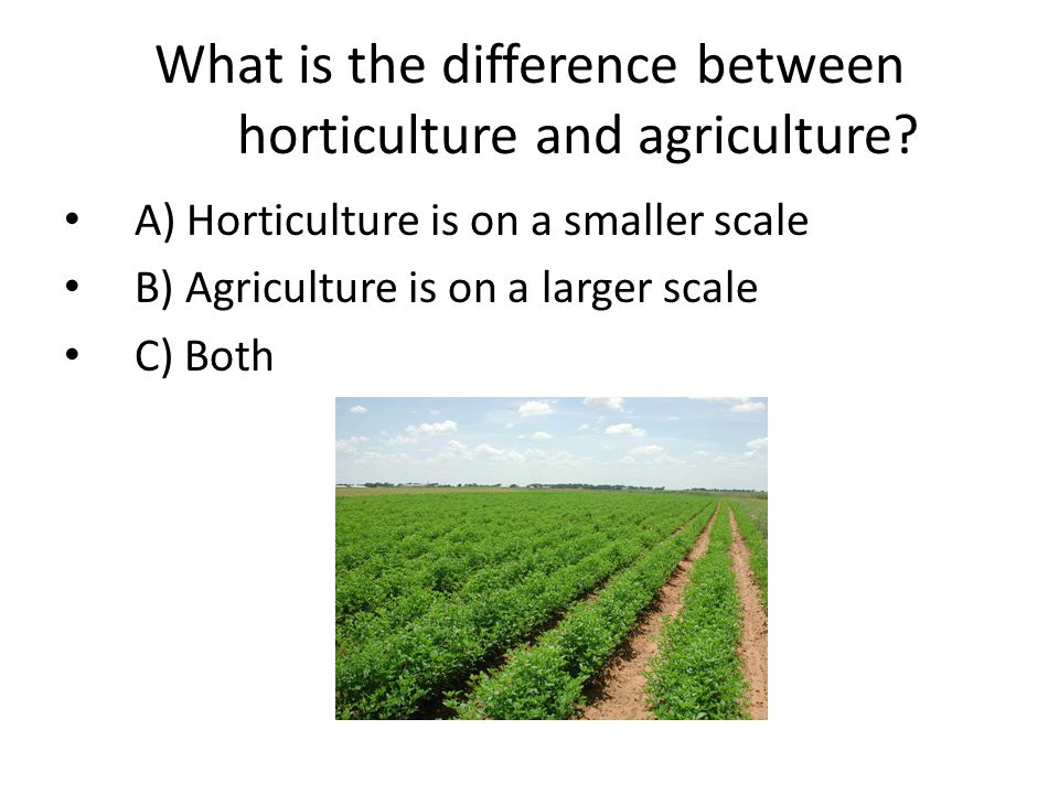 What is the difference between horticulture and agriculture