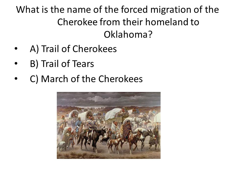 What is the name of the forced migration of the Cherokee from their homeland to Oklahoma