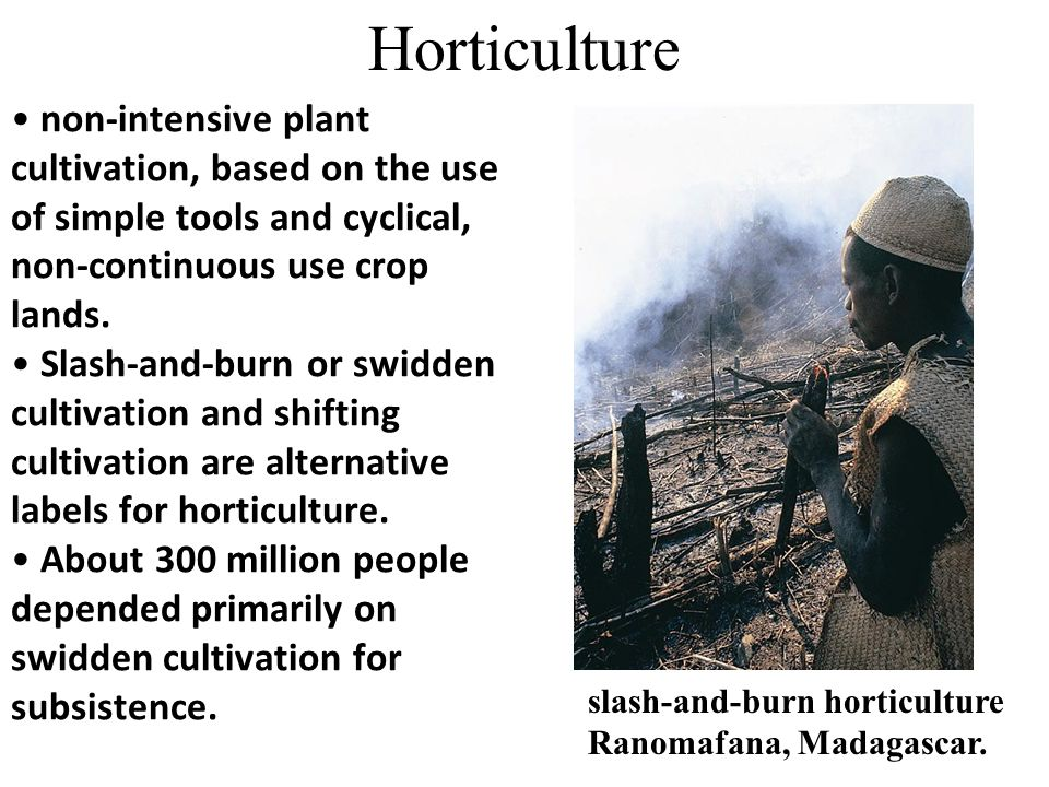Horticulture non-intensive plant cultivation, based on the use of simple tools and cyclical, non-continuous use crop lands.