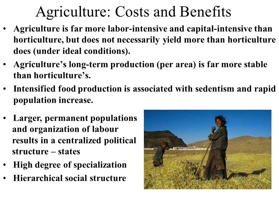 Agriculture: Costs and Benefits