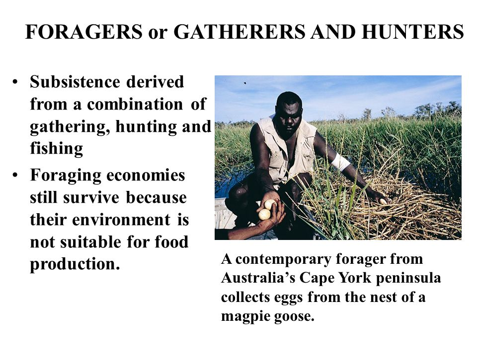 FORAGERS or GATHERERS AND HUNTERS