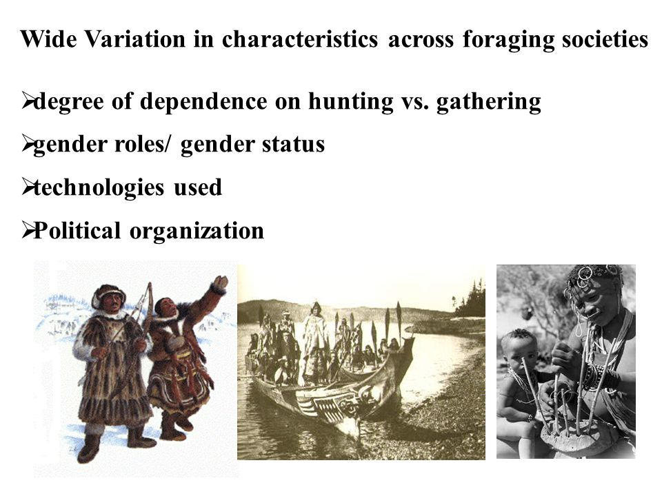 Wide Variation in characteristics across foraging societies