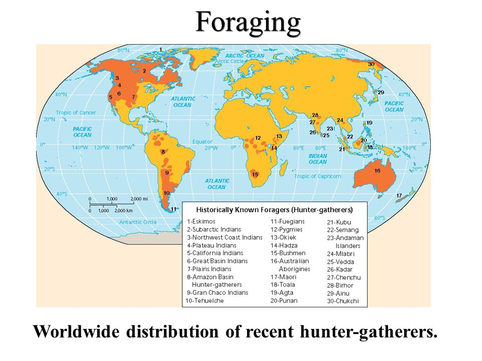 Worldwide distribution of recent hunter-gatherers.