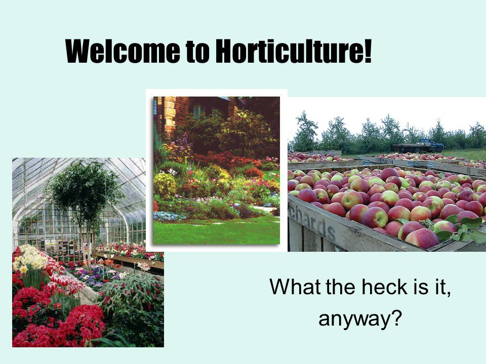 Welcome to Horticulture!
