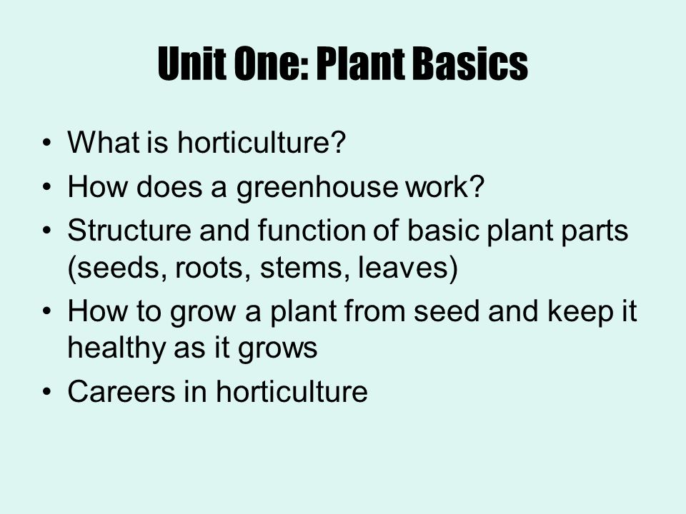 Unit One: Plant Basics What is horticulture