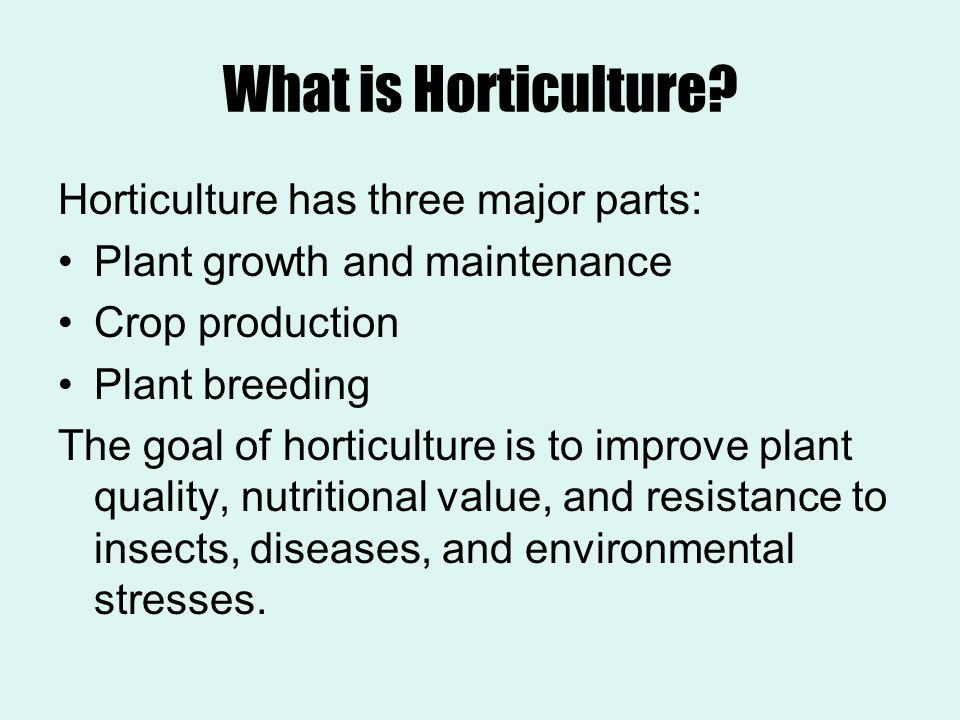 What is Horticulture Horticulture has three major parts:
