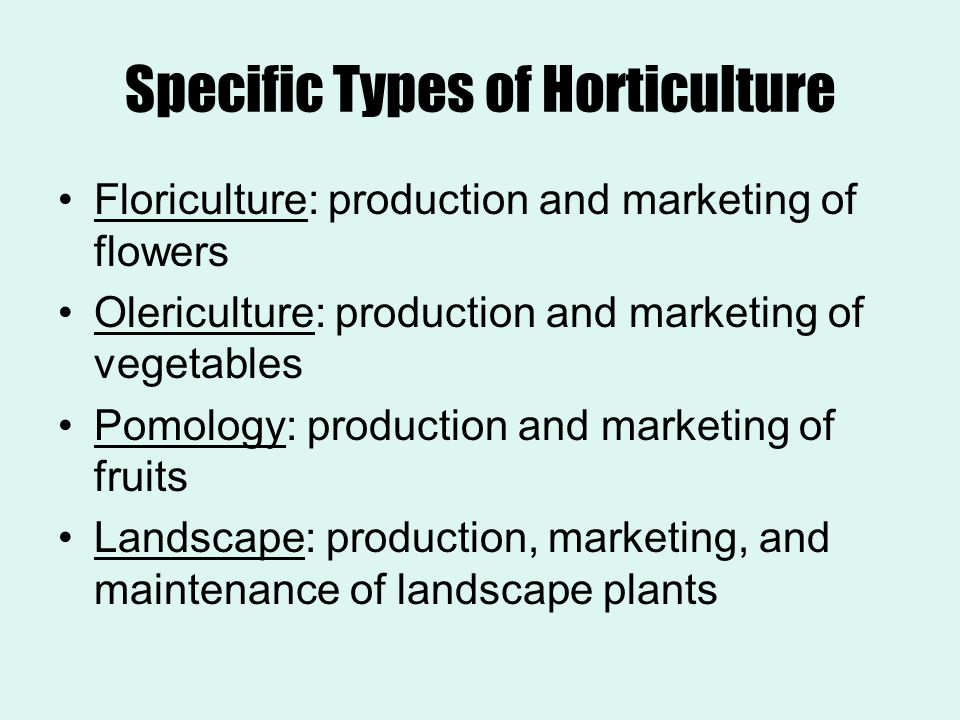 Specific Types of Horticulture