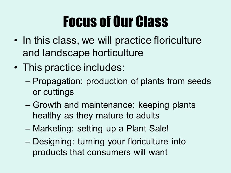 Focus of Our Class In this class, we will practice floriculture and landscape horticulture. This practice includes: