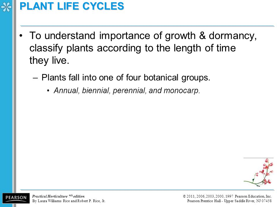 PLANT LIFE CYCLES To understand importance of growth & dormancy, classify plants according to the length of time they live.