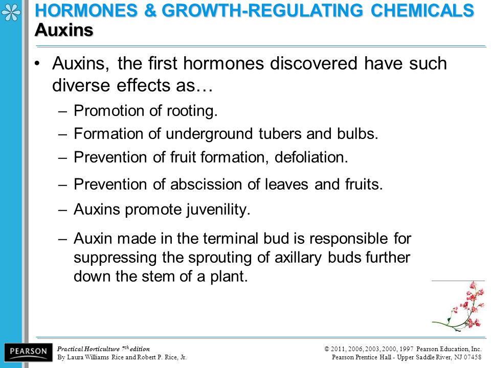HORMONES & GROWTH-REGULATING CHEMICALS Auxins