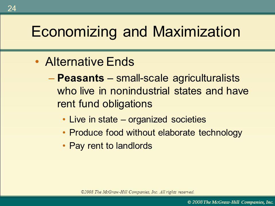 Economizing and Maximization