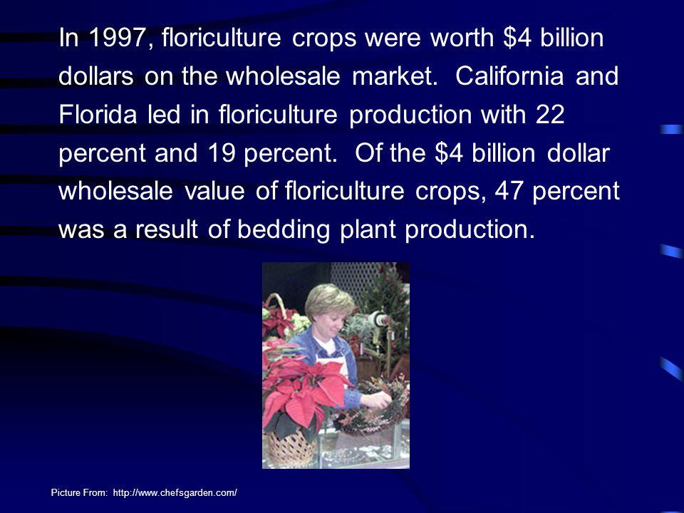 In 1997, floriculture crops were worth $4 billion