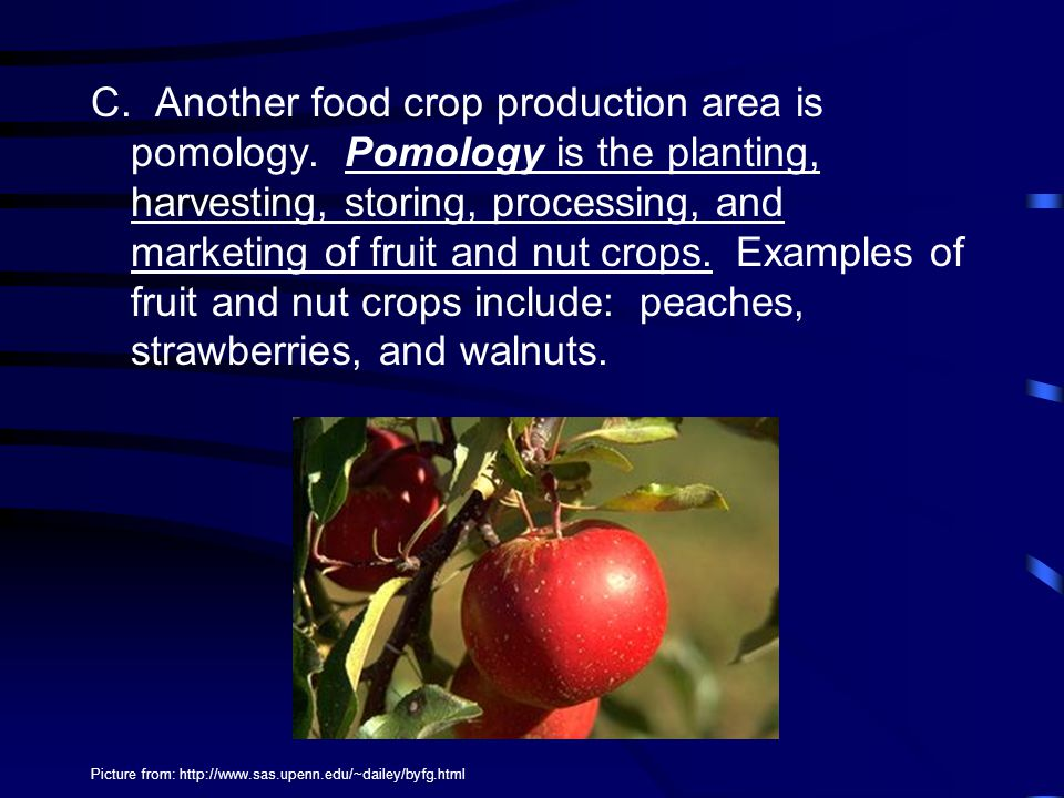 C. Another food crop production area is pomology