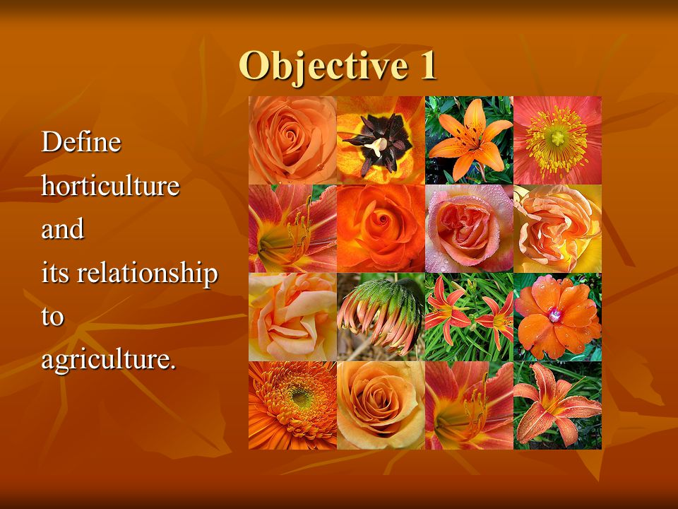 Objective 1 Define horticulture and its relationship to agriculture.