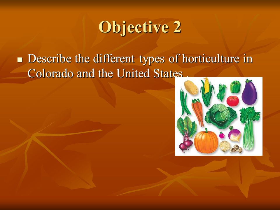 Objective 2 Describe the different types of horticulture in Colorado and the United States .