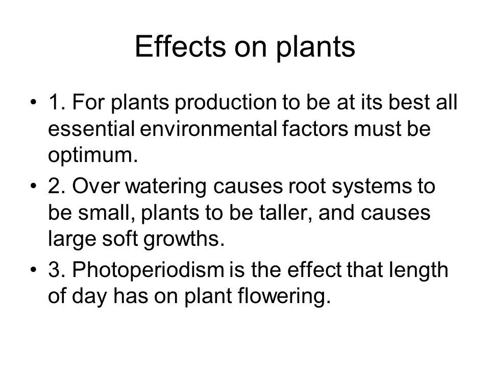 Effects on plants 1. For plants production to be at its best all essential environmental factors must be optimum.