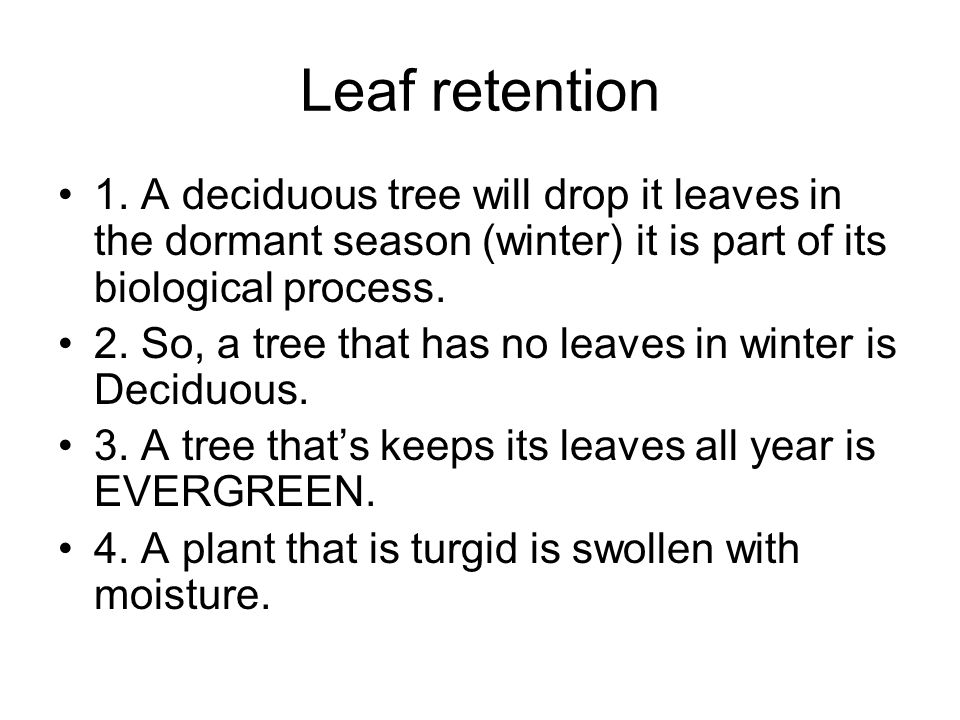Leaf retention 1. A deciduous tree will drop it leaves in the dormant season (winter) it is part of its biological process.