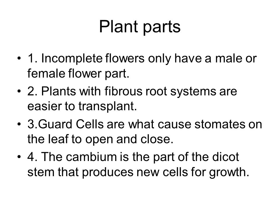 Plant parts 1. Incomplete flowers only have a male or female flower part. 2. Plants with fibrous root systems are easier to transplant.